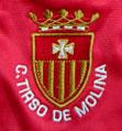 bordado logo Tirso de Molina